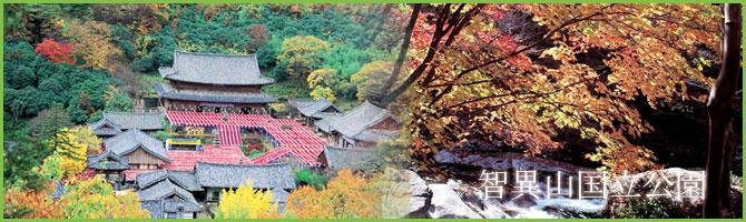 韓国国立公園